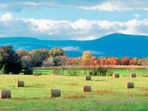 Shenandoah Valley, VA VBAC Facts Workshop @ TBD